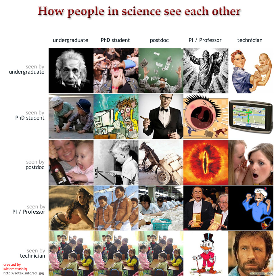 How people in science see each other.